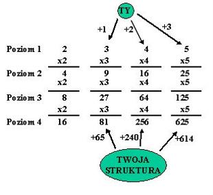 twoja_struktura_mlm